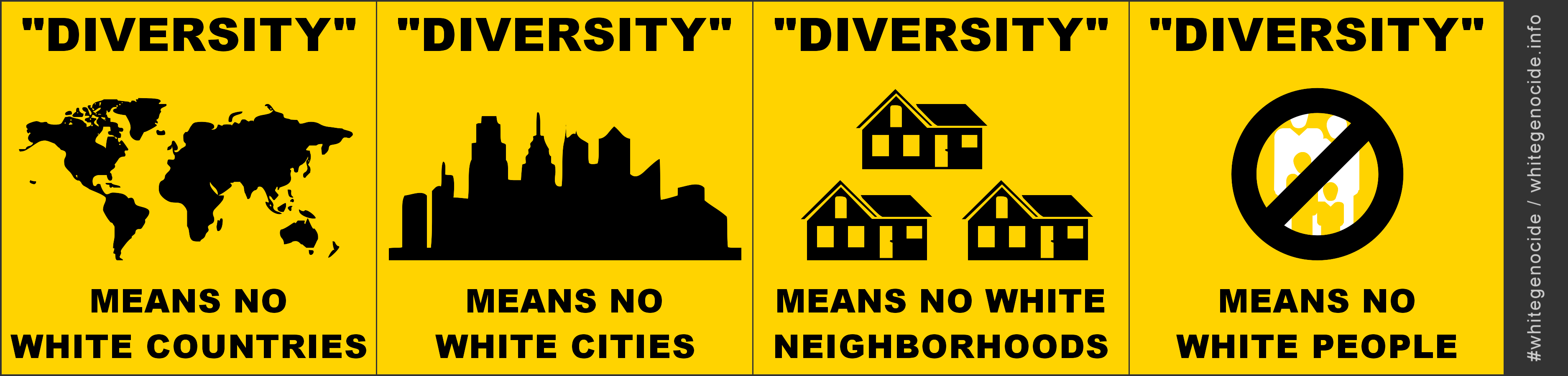 graphic - diversity means no white - single line