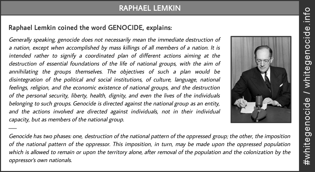 infographic_raphael.lemkin.explains.geno